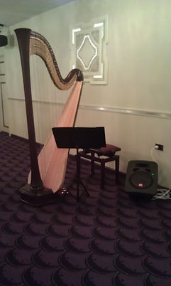 Harp with amplification Melbourne