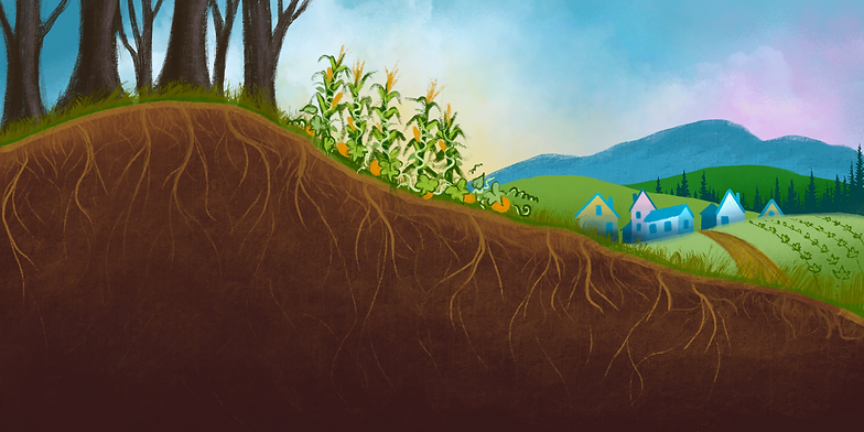 Soil series 4000x2000.png