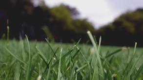 Ploughing, fertilising, spraying? Think again