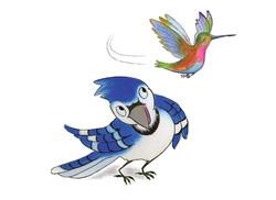 poah-oiseau-mouche3