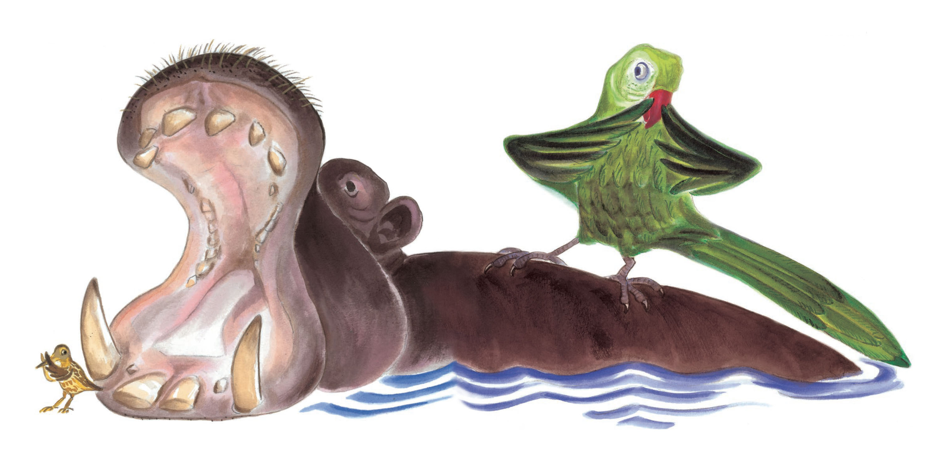 L'hippopotame et le perroquet