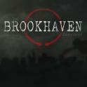 Brookhaven+Experiment.png