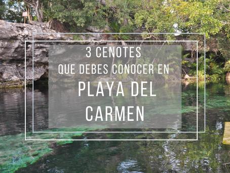 3 cenotes que debes conocer en Playa del Carmen