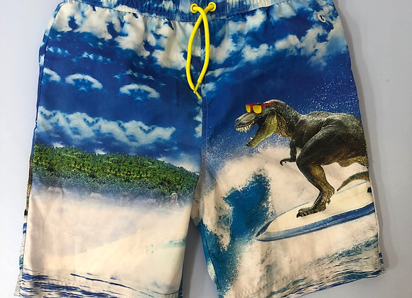 Dinosaur Print Boys Swim Trunks Age 11