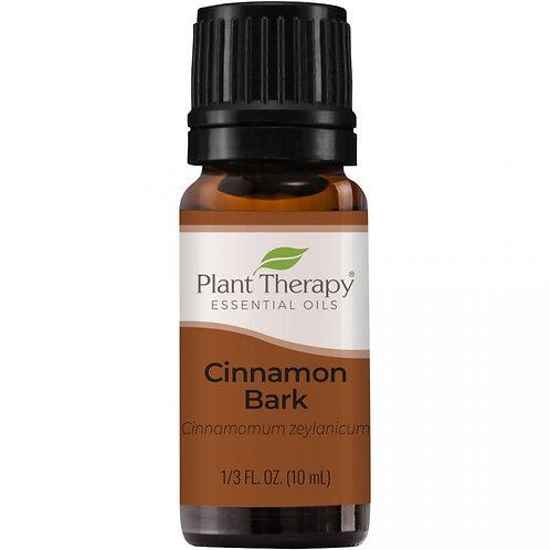 Scortisoara - Ulei esential Cinnamon Bark, Plant Therapy, 10 ml