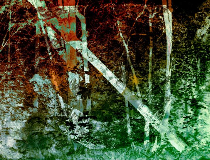 """Sherwood Forest """"Fallen Tree"""""""