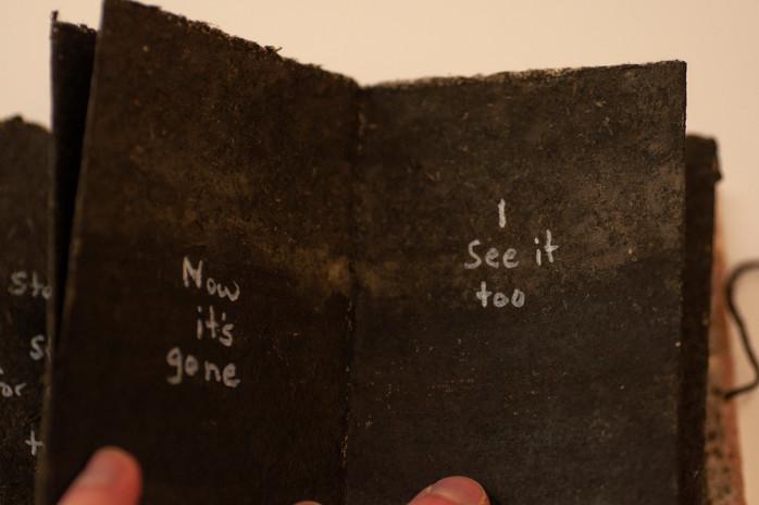 Firefly Book