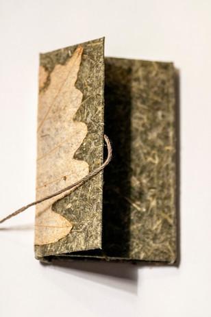 Pickerel Book