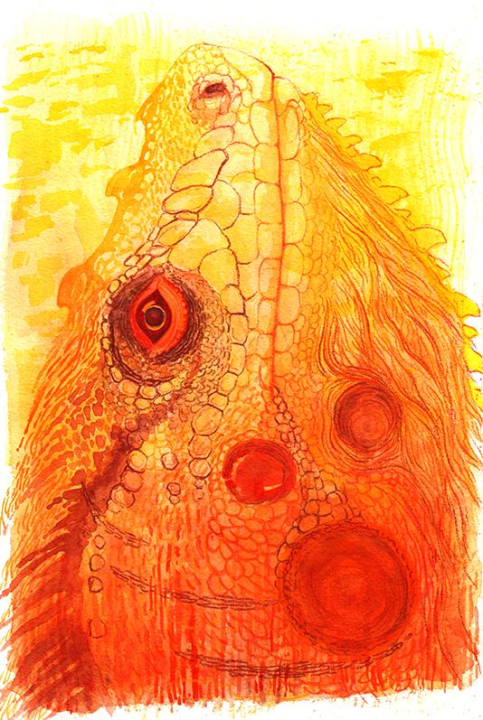 Fire Dragon