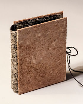 Firefly Book_003.JPG