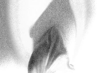 Squid of Cosmic Reflections