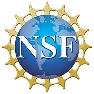 NSF_4-Color_bitmap_Logo-1.jpg
