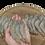 Thumbnail: Creveți cruzi înregi,congelați 500gr