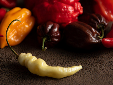 10 unknown facts about peppers