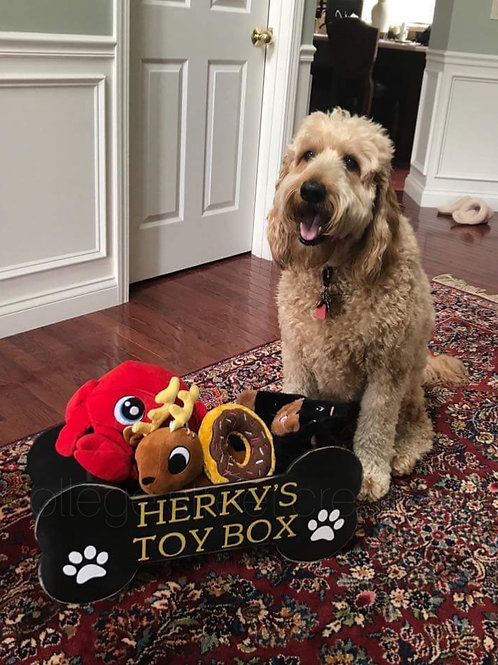 Dog toy box workshop June 17th at 6 pm
