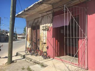 Bikes By Buildings
