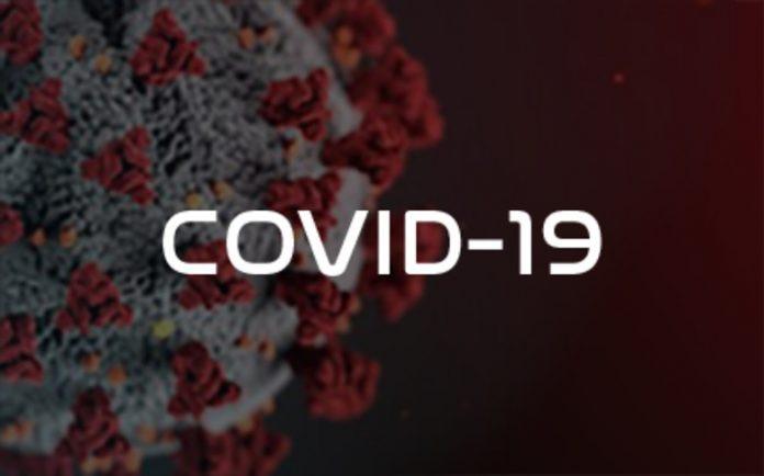 Flórida registra mais de 15 mil novos casos de Covid-19 em 24 horas.