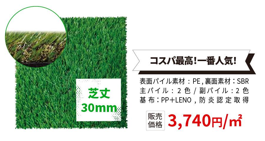芝丈30mm