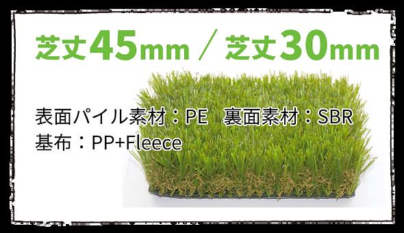 芝(商品説明).png