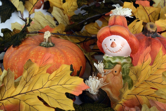 Thanksgiving Activities for Seniors and Older Adults