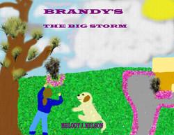 The Big Storm.jpg