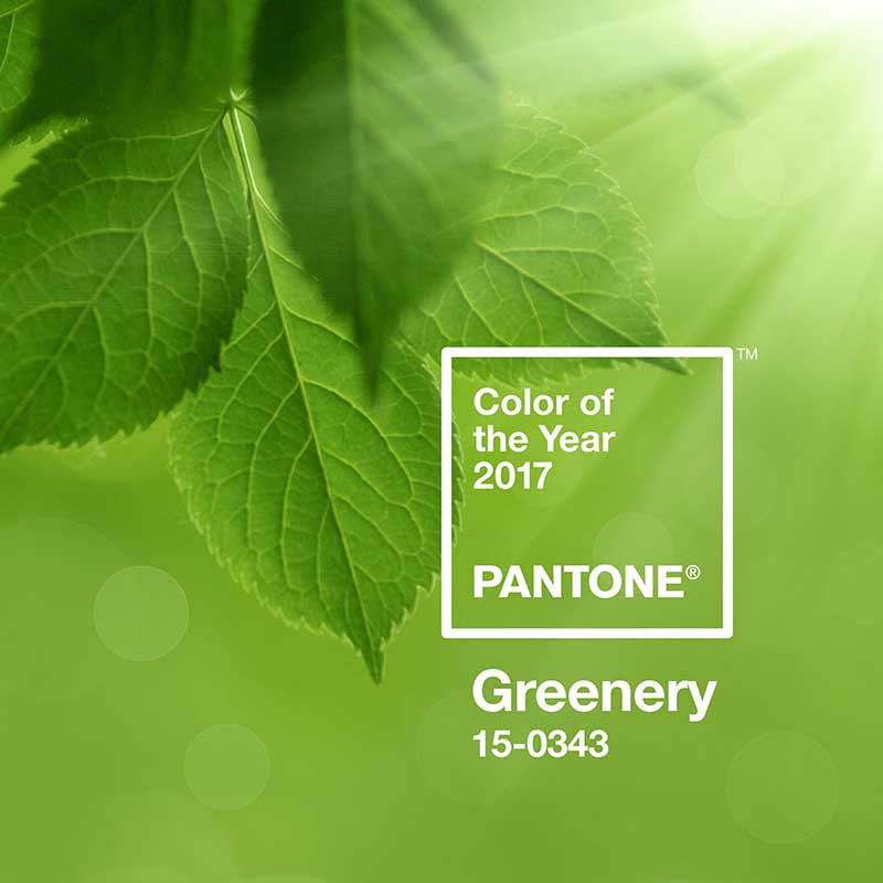 Greenery: color of the year 2017