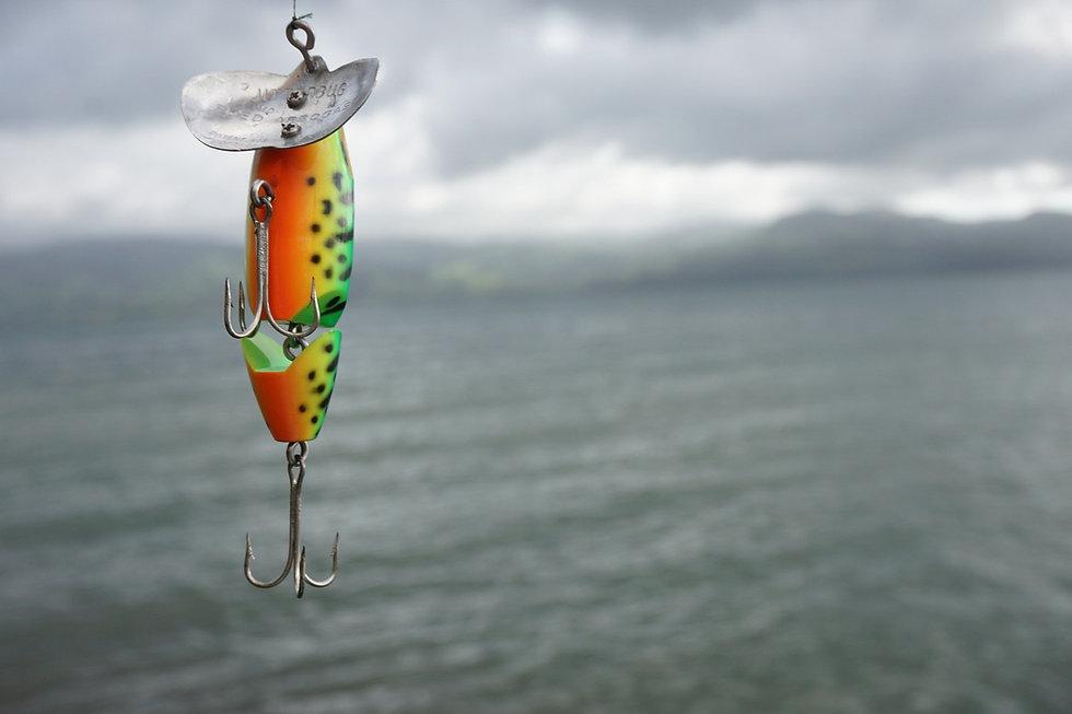 fishing-2665085_1920.jpg