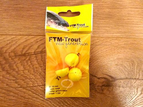 FTM-Trout Pilot