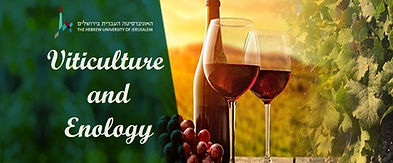 viticulture enology faculty of agricultu