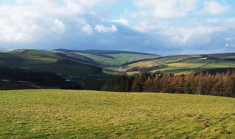Borders landscape