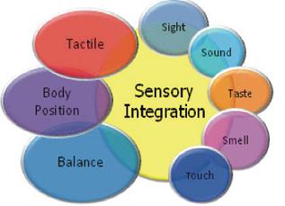 Sensory Integration at TLE