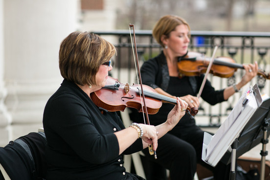 Timeless string quartet