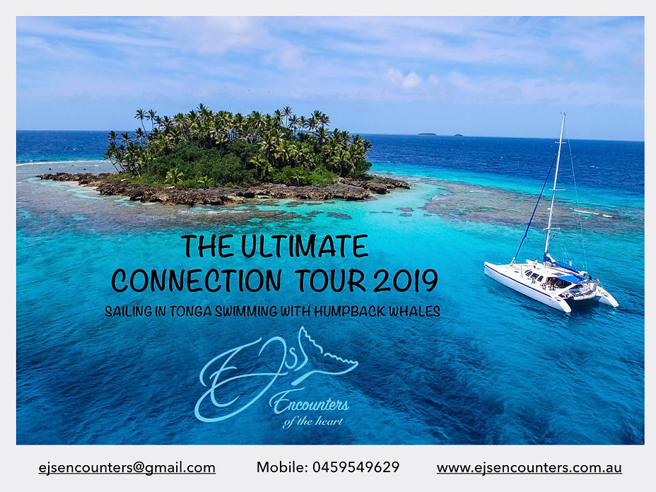 ALL The Ultimate Connection Tour Tonga.0