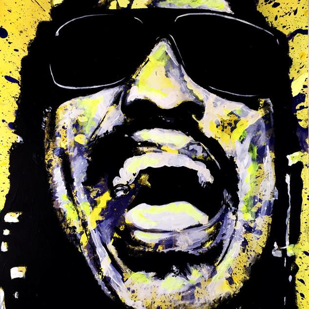"""Stevie Wonder 35"""" x 22.5"""""""