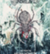 Abstract Orbweaver Flyer Example 2.jpg