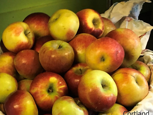 Apples , Valley View Farm
