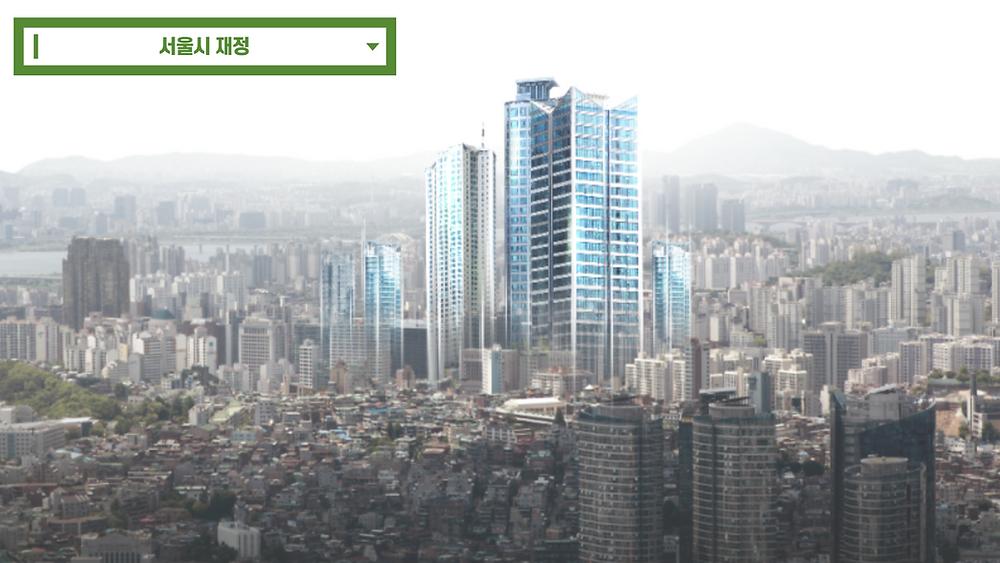 서울시 재정