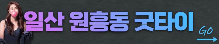 일산 원흥동 원흥굿타이 바로가기