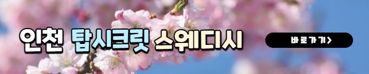 인천 탑시크릿 바로가기