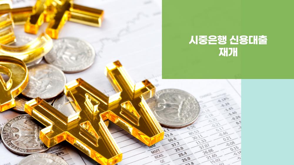 시중은행 신용대출 재개