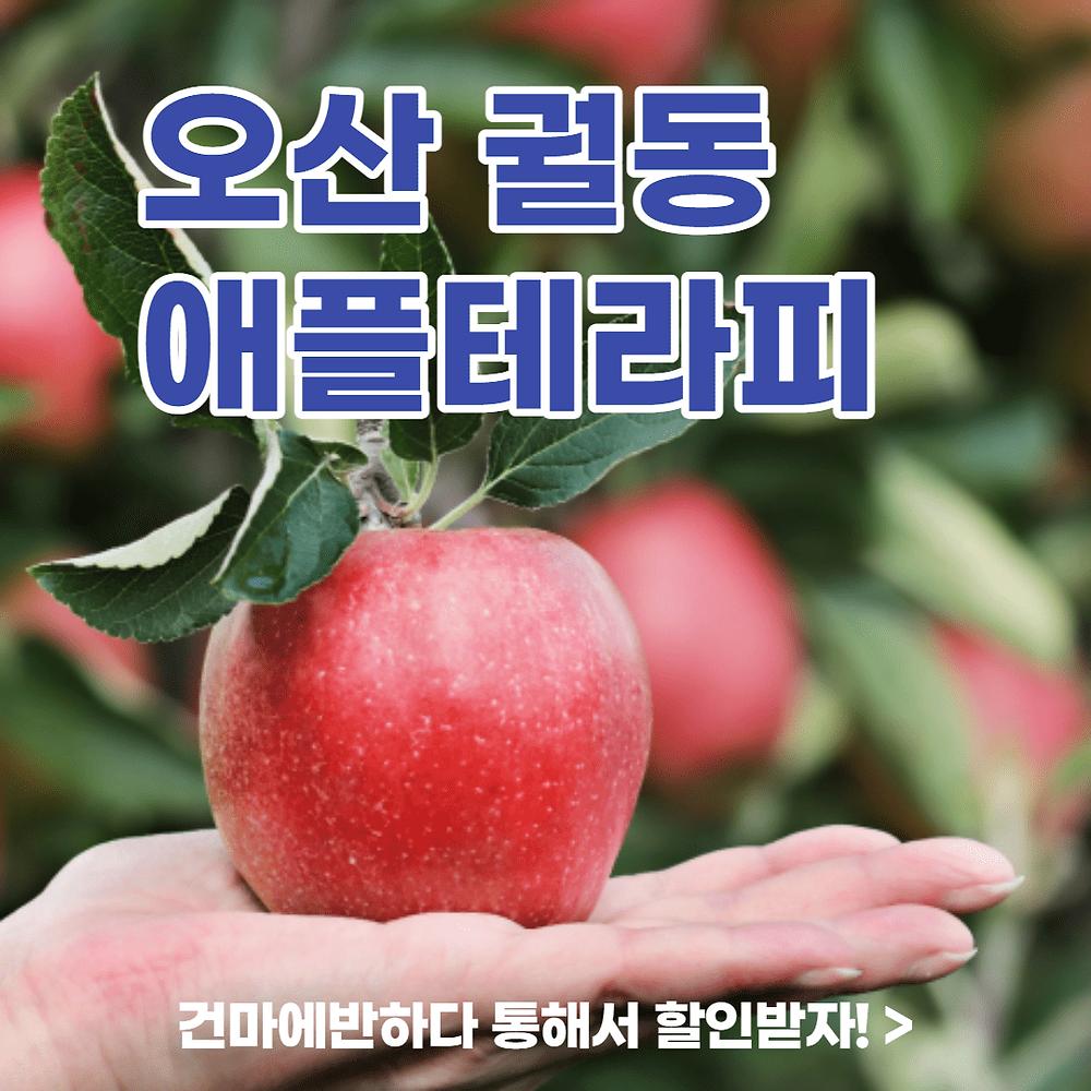 오산 궐동 애플테라피