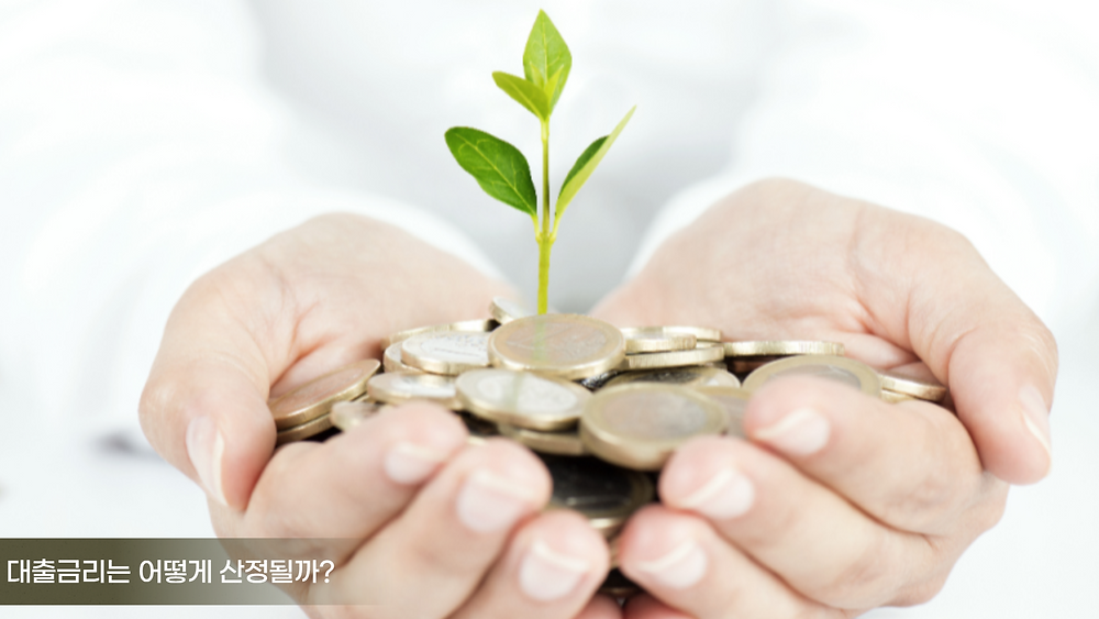대출금리는 어떻게 산정될까?