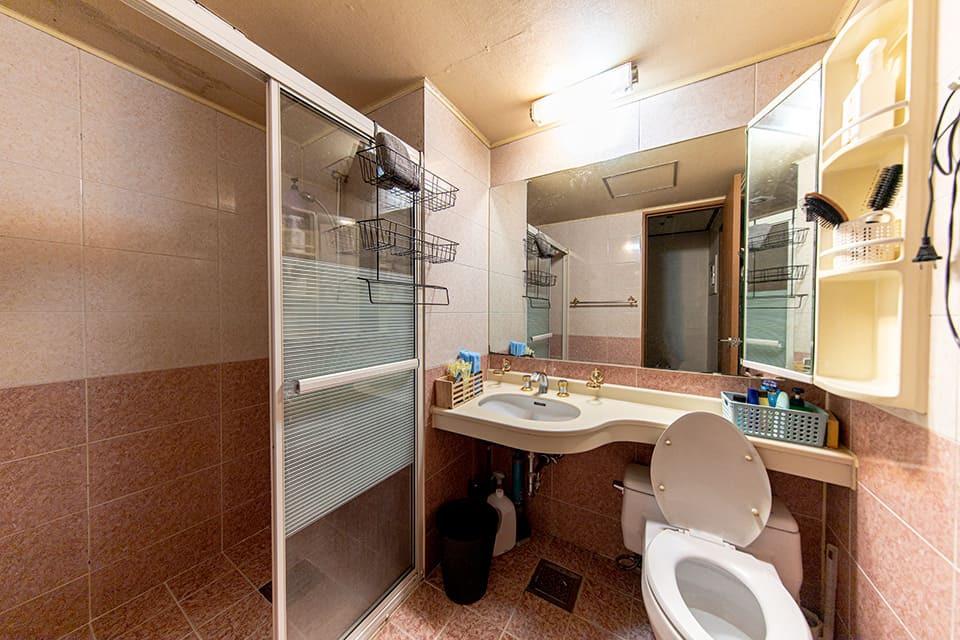 일산 장항동 레드스웨디시 샤워실