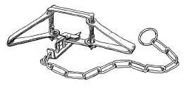 trap1.jpg