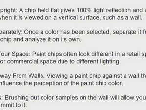 Paint Chip Tips
