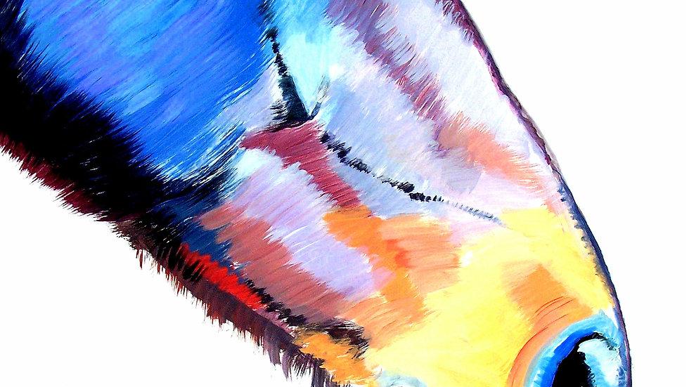 """Profile In Primary Colors"""