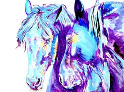 Blue-Couple-1a.jpg