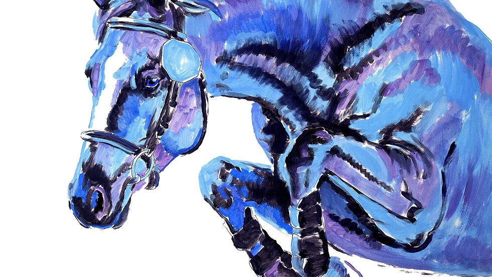 """""""Jumper In Blue"""""""