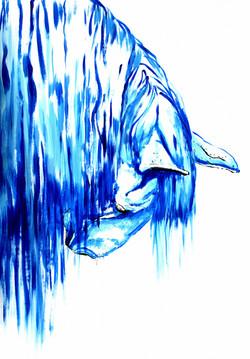 Blue-Fall-1a.jpg