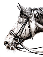"""Inked Profile With Double Bridle"""